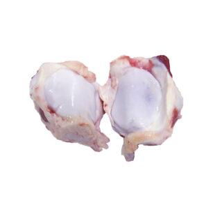 Huesos babilla
